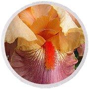 Iris Garden 19 Round Beach Towel by Randall Weidner