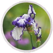 Round Beach Towel featuring the photograph Iris Loop The Loop  by Rona Black