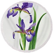 Iris Monspur Round Beach Towel by Anonymous