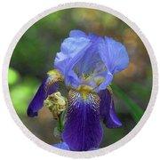 Iris Purple And Blue Round Beach Towel