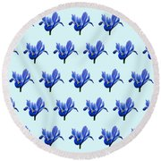 Round Beach Towel featuring the photograph Iris Recticulata-2 by Paul Gulliver