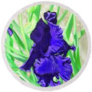 Iris Royalty Round Beach Towel