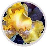 Iris Supreme Round Beach Towel