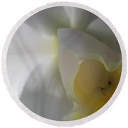 Round Beach Towel featuring the photograph Iris Up Close by Ronald Santini