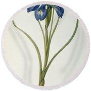 Iris Xyphioides Round Beach Towel