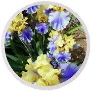 Irises 11 Round Beach Towel