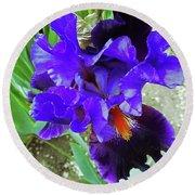 Irises 12 Round Beach Towel