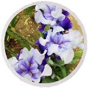Irises 14 Round Beach Towel
