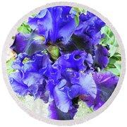 Irises 18 Round Beach Towel