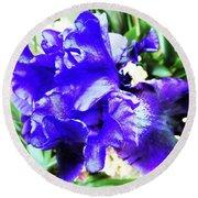 Irises 20 Round Beach Towel