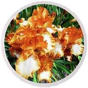 Irises 21 Round Beach Towel