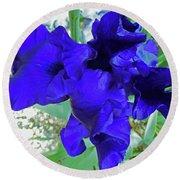 Irises 3 Round Beach Towel