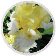 Irises 9 Round Beach Towel