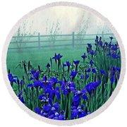 Irises At Dawn 3 Round Beach Towel