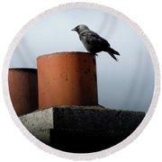 Irish Raven Round Beach Towel