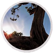 Ironwood Silhouett Round Beach Towel
