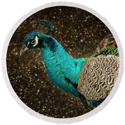 Round Beach Towel featuring the photograph Is She Looking ? by Jean Noren