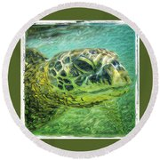 Isabelle The Turtle Round Beach Towel by Erika Swartzkopf