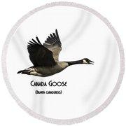 Isolated Canada Goose 2015-1 Round Beach Towel