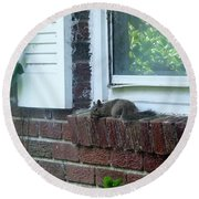Round Beach Towel featuring the photograph It Is Cool Here In The Shade by Denise Fulmer