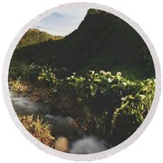 Round Beach Towel featuring the photograph It Was A Hard Winter by Laurie Search