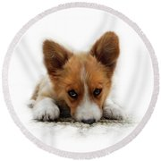 It Wasn't Me Corgi Round Beach Towel