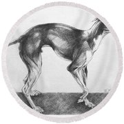 Italian Greyhound Round Beach Towel