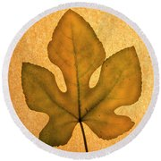 Italian Honey Fig Leaf 4 Round Beach Towel