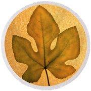 Italian Honey Fig Leaf 4 Round Beach Towel
