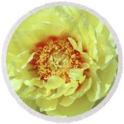 Itoch Peony  Round Beach Towel