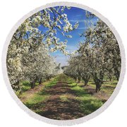 It's A New Day Round Beach Towel by Laurie Search
