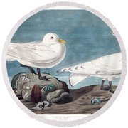 Ivory Gull Round Beach Towel