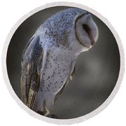 Ivy The Barn Owl Round Beach Towel
