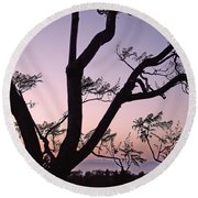 Round Beach Towel featuring the photograph Jacaranda Silhouette by Rona Black