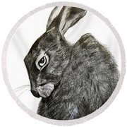 Round Beach Towel featuring the drawing Jackrabbit Jock by Linde Townsend