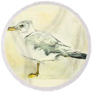 Jackson The Seagull Round Beach Towel