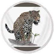 Jaguar 10 Round Beach Towel