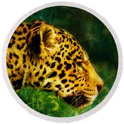 Jaguar In The Grass Round Beach Towel