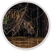 Jaguar In Vines Round Beach Towel by Wade Aiken