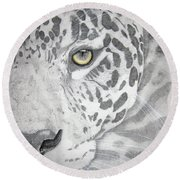 Round Beach Towel featuring the drawing Jaguar by Mayhem Mediums