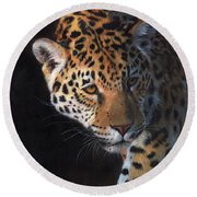 Jaguar Portrait Round Beach Towel by David Stribbling