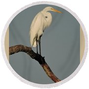 January Egret Round Beach Towel