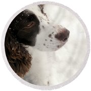 January Spaniel - English Springer Spaniel Round Beach Towel by Angie Rea