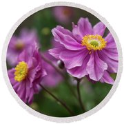 Japanese Anemone Round Beach Towel