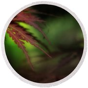 Round Beach Towel featuring the photograph Japanese Maple by Mike Eingle