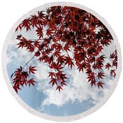 Japanese Maple Red Lace - Horizontal View Downwards Left Round Beach Towel