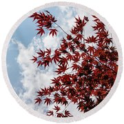 Japanese Maple Red Lace - Vertical Up Left Round Beach Towel
