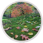 Japanese Maple Tree On A Green Mossy Slope Round Beach Towel