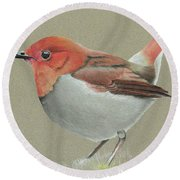 Round Beach Towel featuring the drawing Japanese Robin by Gary Stamp