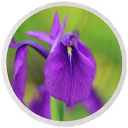Japanese Water Iris Flower Round Beach Towel